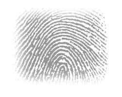 browser-fingerprint