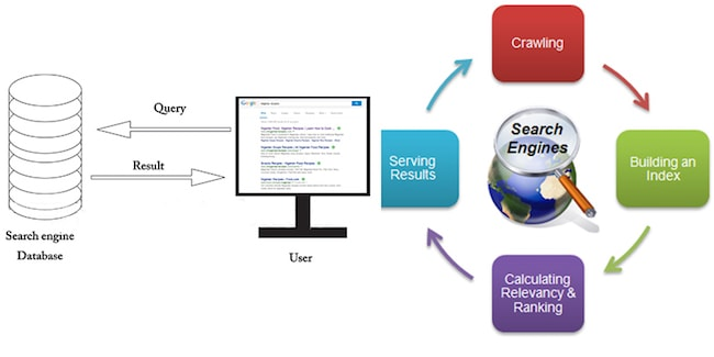 how search engine operates
