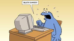 what are web cookies