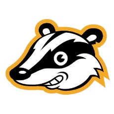 privacy badger logo